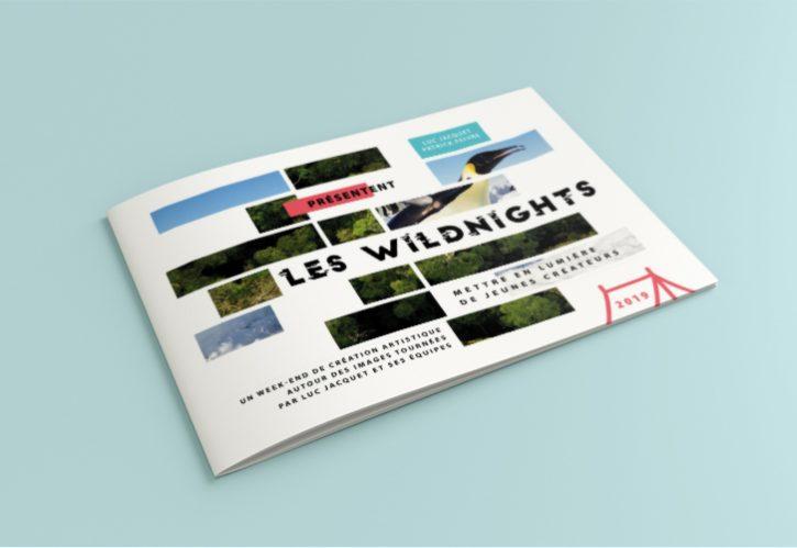 LES WILDNIGHTS D'ICEBREAKER