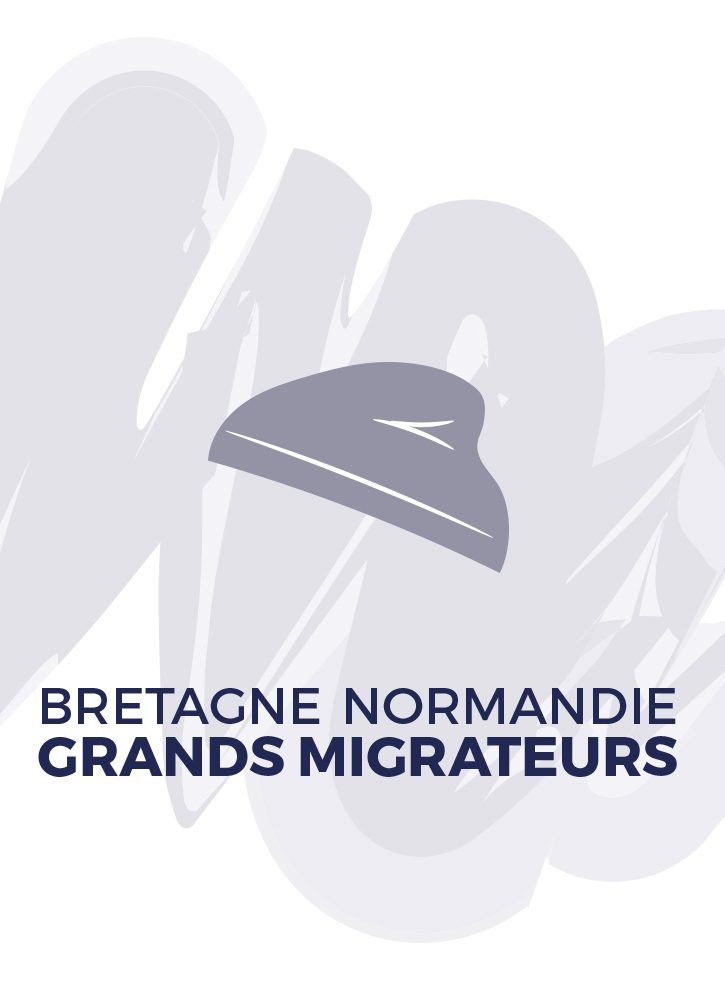 BRETAGNE GRANDS MIGRATEURS et NORMANDIE GRANDS MIGRATEURS